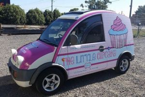 Printed Vinyl Wraps - The Little Cupcake